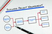 businessprojectmanagement_23568096.jpg