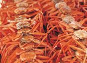 crabs14536718.jpg