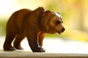 bear60505705.jpg