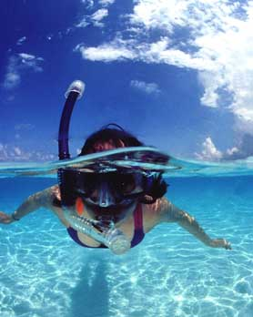 snorkeling-cayman-islands.jpg