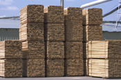 woodpiles30512995.jpg